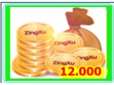 12.000 ZING XU