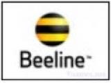 Beeline 100K
