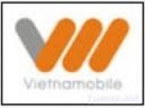 Vietnam mobile 100k