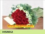HSN02