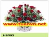 HSN05