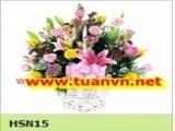 HSN15