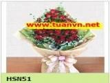 HSN51