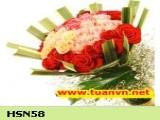 HSN58